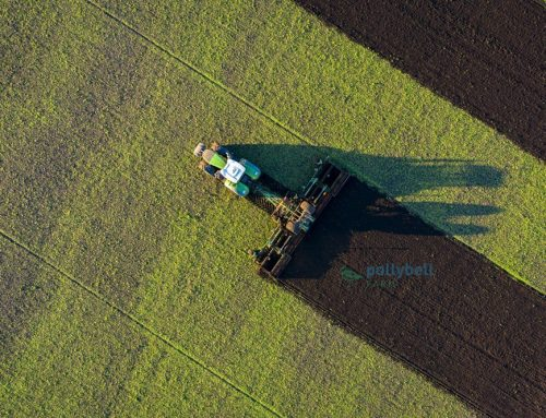 Organic Farming – FENDT 1050 and Amazone Catros Discs