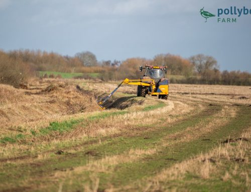 Winter Field and Drainage Maintenance