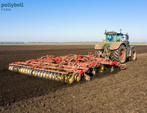 Organic Land Preparation