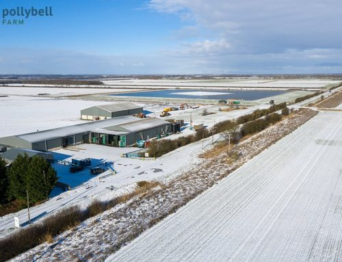 A snow covered look over the farm and reservoir last week.
